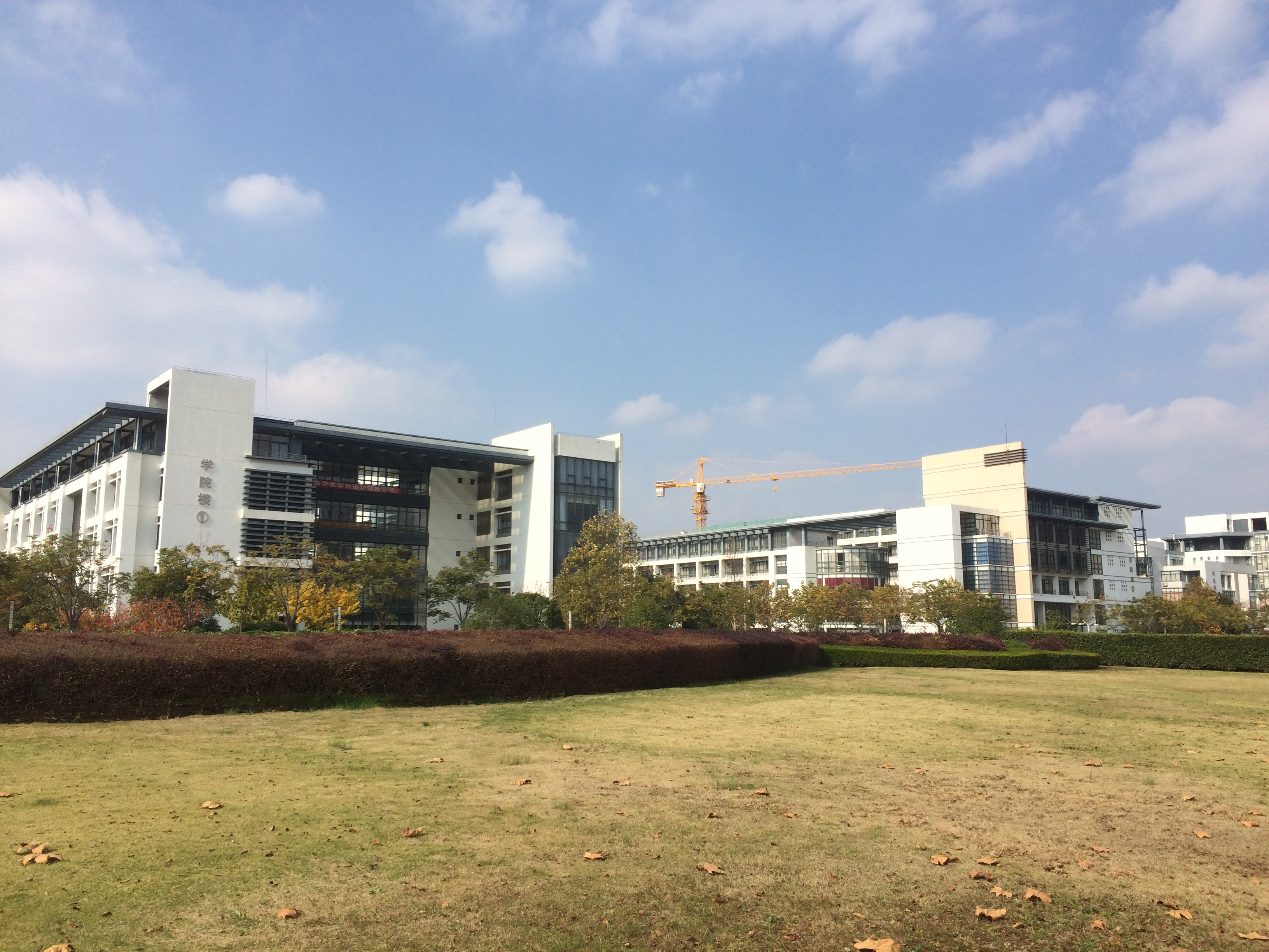 秋意渐浓——东华大学松江校区