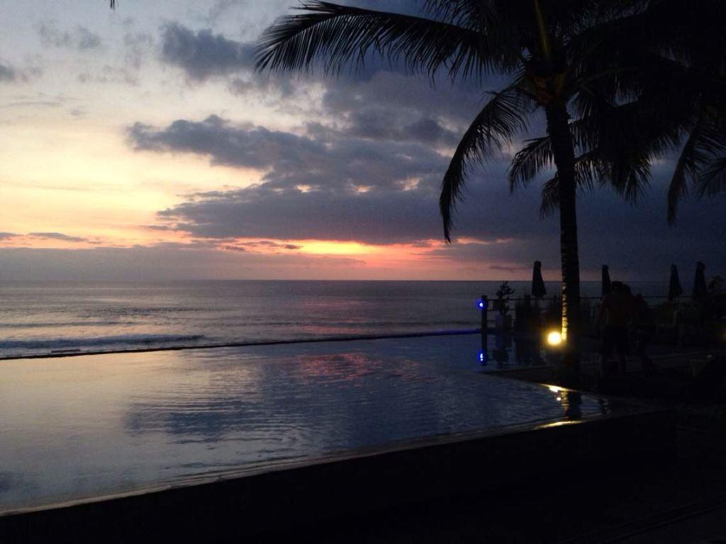 椰树 夕阳 落日