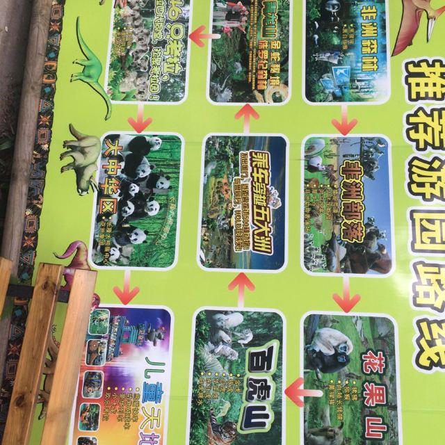汉溪长隆野生动物园一日游! - 广州游记攻略【携程