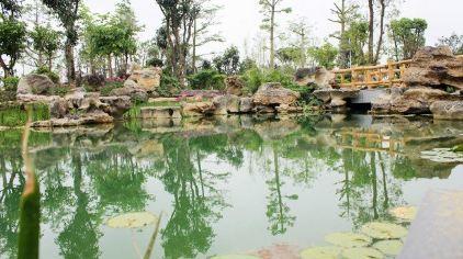 园艺博览会园博园位于银滩大道以北