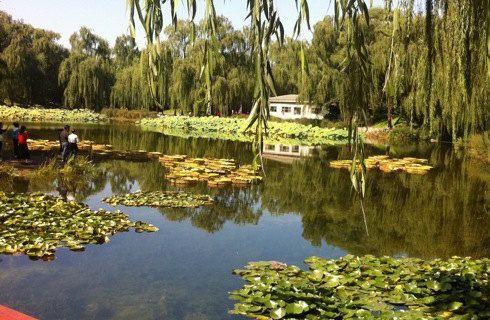 圆明园遗址公园_北京_百度地图