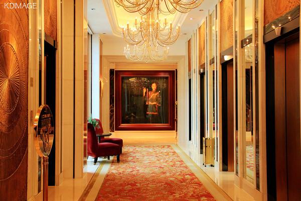 电梯走廊也是沿用欧式古典装饰风格,一阵阵清新扑鼻的香水味道,很舒服