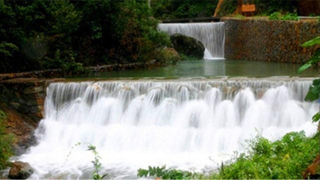 【携程攻略】水竹湾森林公园,浦江水竹湾森林公园旅游