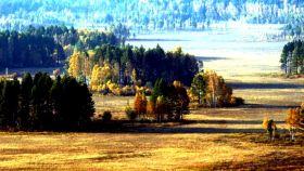 呼中自然保护区