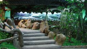 武夷蛇博园