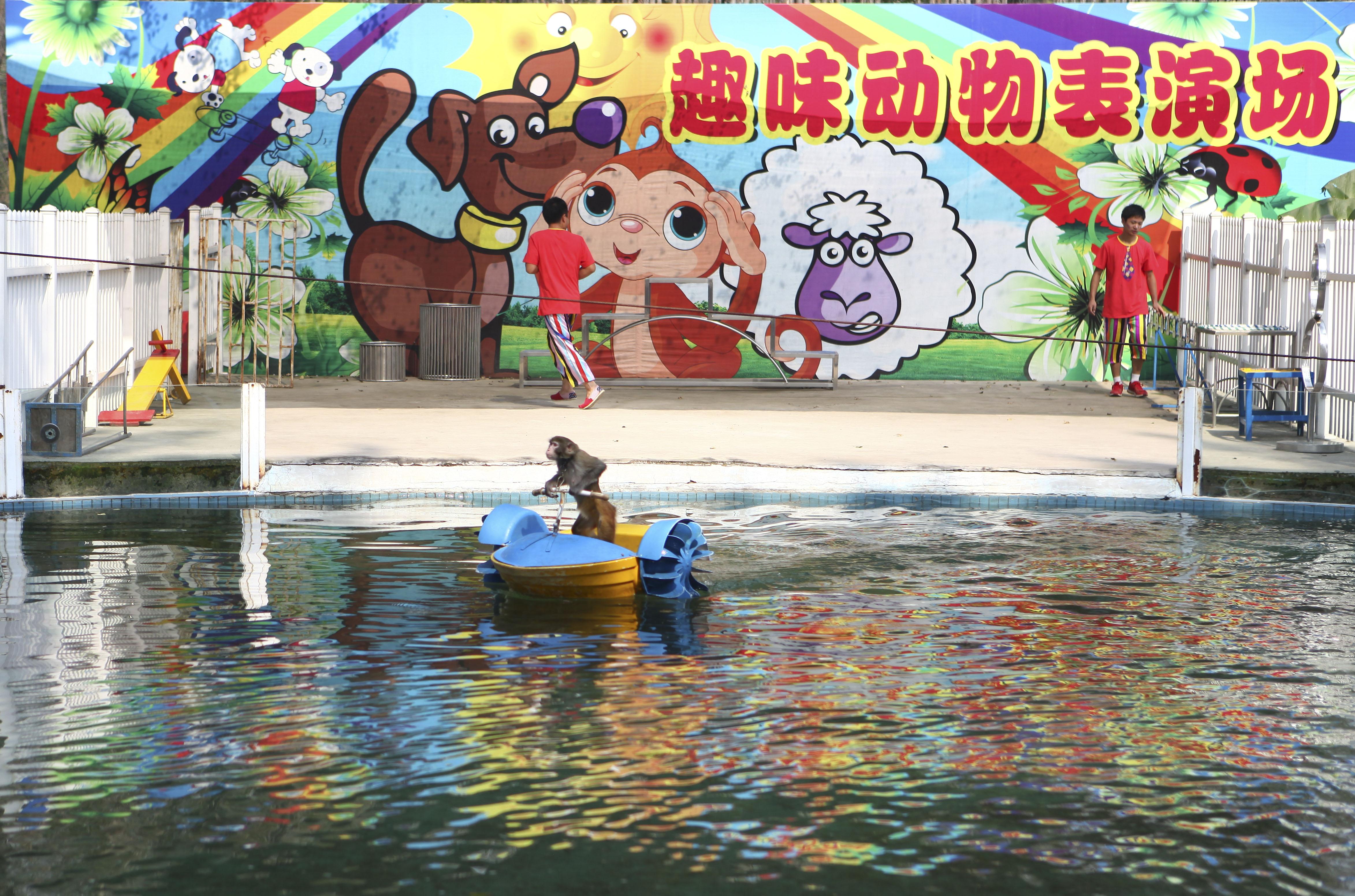【美差】 我拍过北京野生动物园