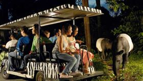 夜间野生动物园