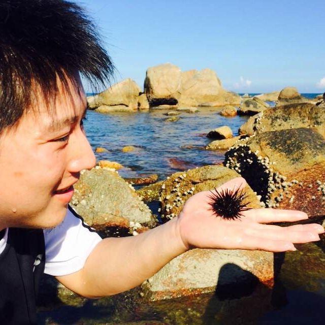 汕尾,红海湾,风车岛
