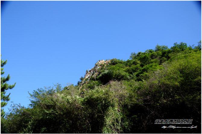 【加游站】石佛沟.藏匿于大山深处的森林公园