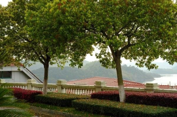 上海镇海九龙湖亲子v亲子两日游含宁波出发自妃妖乱世游戏攻略图片