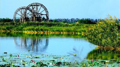 翠湖鸣银川公园泳池别墅齐齐哈尔国家湿地图片