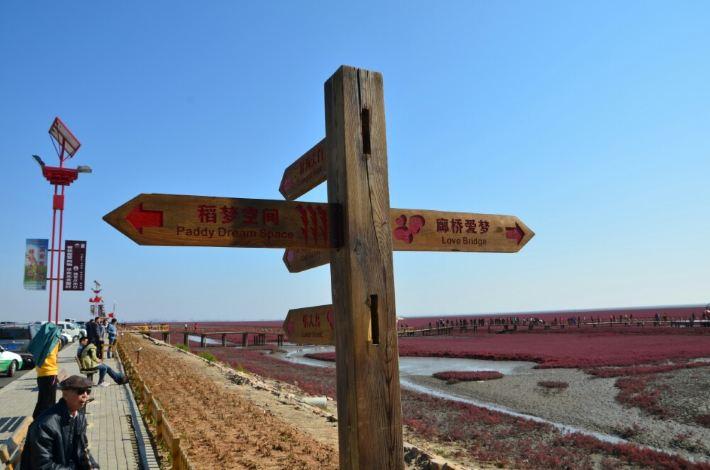 【十一自驾东世界之四】奇观游记红海滩,攻略温泊风景图片