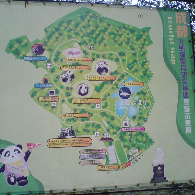 黑颈鹤,白鹤等珍稀动物,尤其是成对成群的大熊猫和大熊猫幼崽,估计全