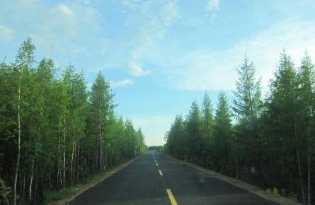 走森林进草原横穿大兴安岭环游中俄边境