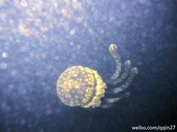 【原创】2011年国庆假期新加坡 民丹岛攻略