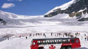 哥伦比亚冰原