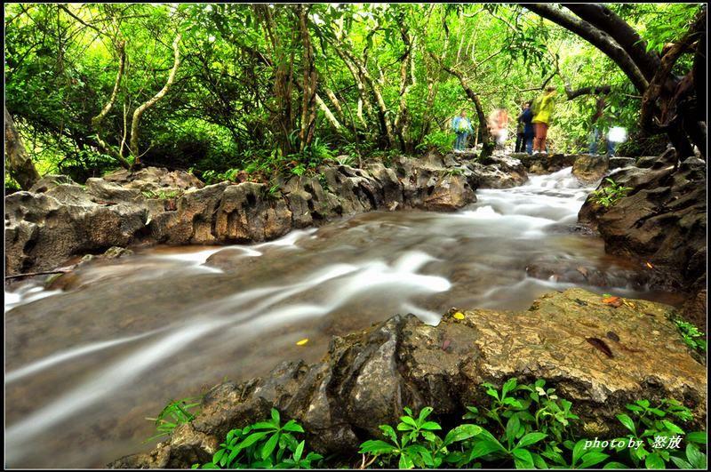 小七孔水上森林,水在石上淌,树在水中长,石上盘根错节,枝间古藤缠绕图片