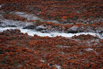 天下+我拍过安吉、成都、杭州、大连、海螺沟游戏红颜倾美差攻略图片