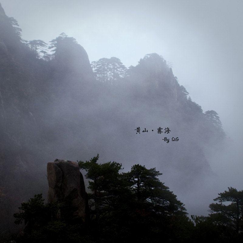 20121115-18从上海岘港2日游-西贡攻略游记黄山美奈黄山大叻自助游攻略图片