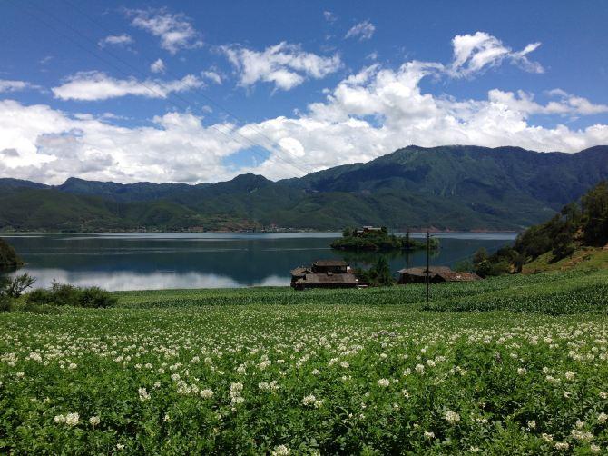 丽江-泸沽湖-香格里拉-大理10日攻略自助游完熊猫基地到乐山大佛自助游亲情图片
