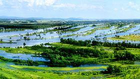 七星河湿地国家级自然保护区
