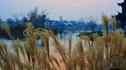 杭州西溪湿地西区(洪园景区)