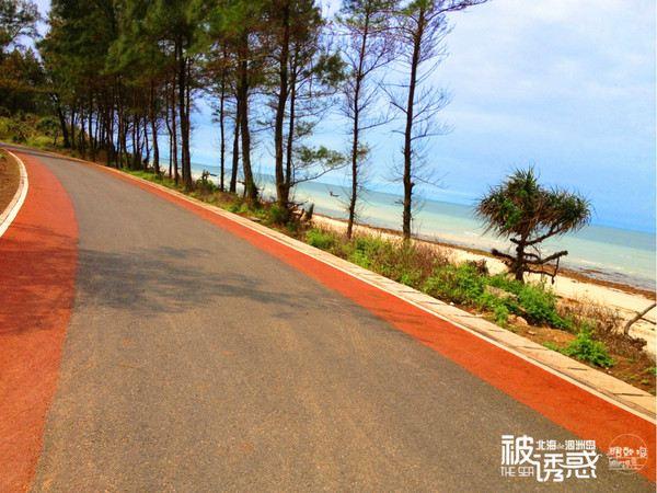 五彩路是环岛公路中上唯一可以看到海的一段路,来涠洲岛游玩的朋友
