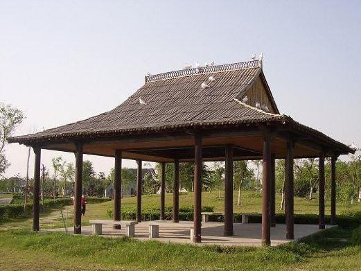 泰州动物园图片
