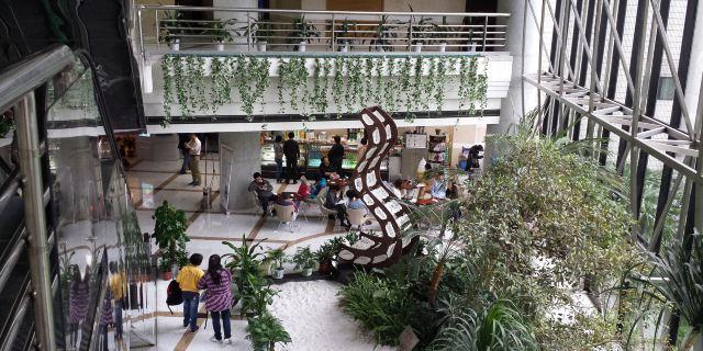 上海图书馆上海科学技术情报研究所馆藏资源丰富