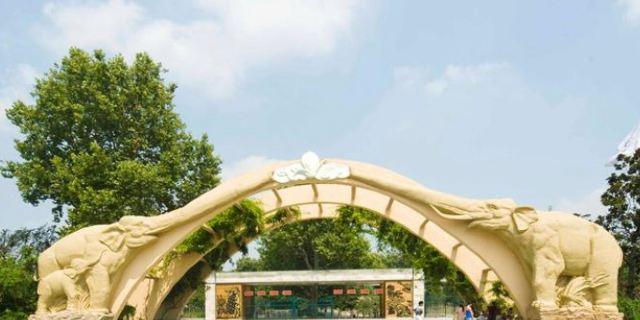 上海动物园共多少人浏览:590150