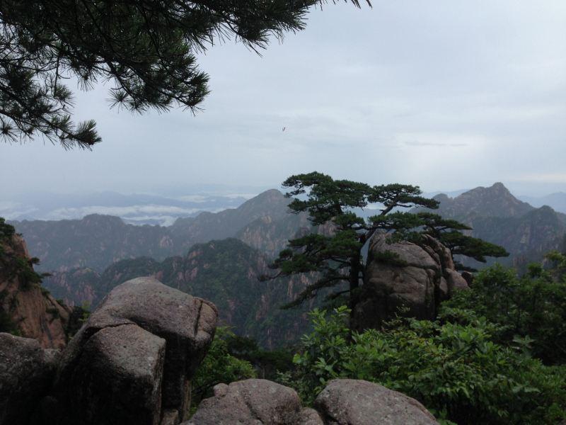 黄山2日游-黄山攻略攻略【携程游记】攻略P5田志鸭图片