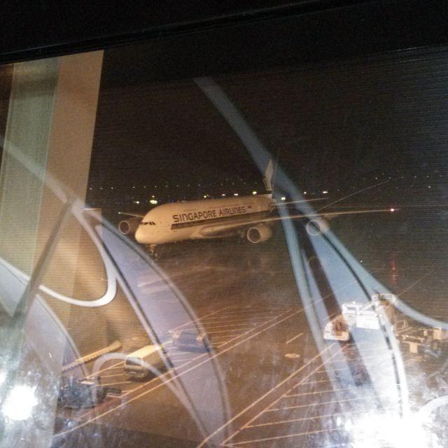 远离马累,可以坐飞机看岛.