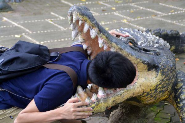 独闯菲律宾达沃:尝鳄鱼冰淇淋,与巨蟒共舞,暴走sm大扫货!