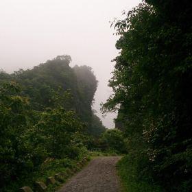 绥阳宽阔水原始森林门票,绥阳绥阳宽阔水原始森林攻略 地址 图片 门