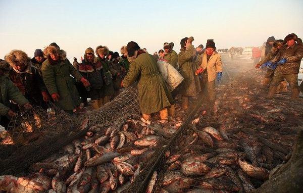 查干湖冬季捕鱼的下网原理