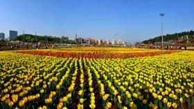 湖南省森林植物园