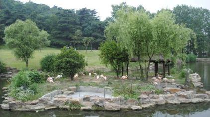 石家庄市动物园_石家庄市动物园价格