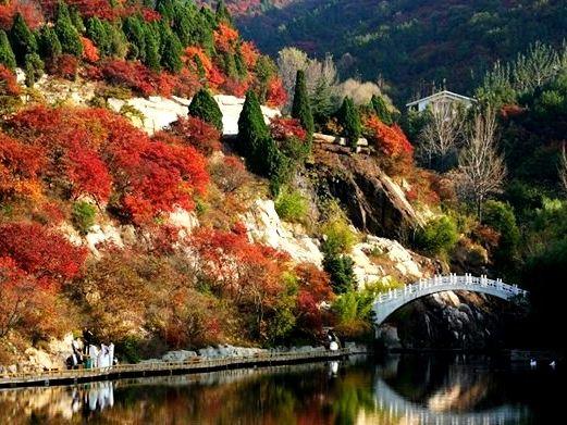 济南动物园风景