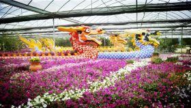 台湾主题文化园