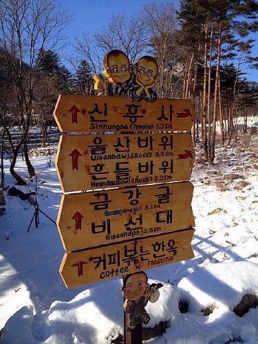 可爱的韩国小和尚