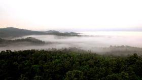 凉水自然保护区