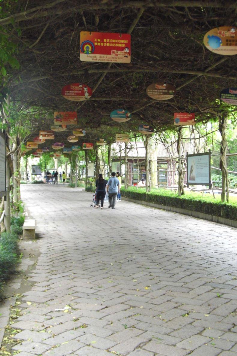 【i旅行】上海野生动物园