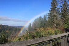 斯诺夸尔米瀑布-西雅图-西溪老翁