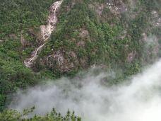 云谷飞瀑-明月山-一泓茗茶