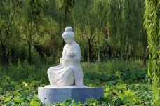 东明黄河国家湿地公园动物园-东明