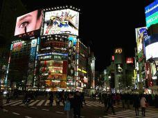 新宿歌舞伎町-东京-M33****0868