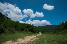 大坡岭省级森林公园-渠县-金哥V铁马
