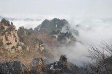 天子山-武陵源区-世界美食游走达人