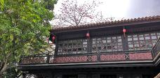 清晖园博物馆-顺德区-暗夜惊蛰