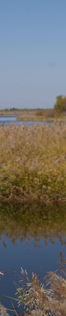 黄沙古渡原生态旅游区-银川